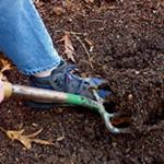 Грунт для рассады: как правильно приготовить почву для каждой культуры