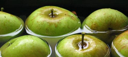 Способы хранения яблок в квартире