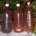 органические подкормки рассады