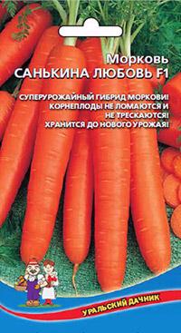 Самые сладкие сорта моркови: санькина любовь