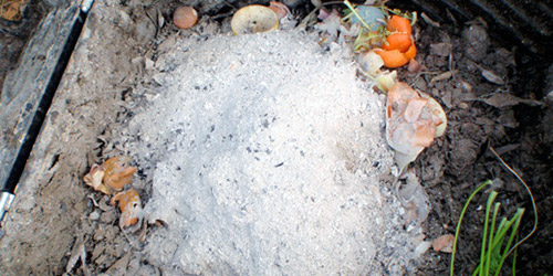 Применение золы в компосте