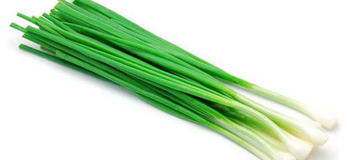 Выращивание ранней зелени: лук на зелень