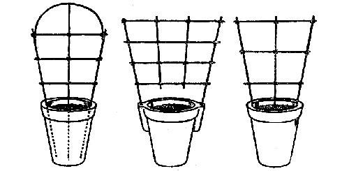 Выращивание огурцов на подоконнике: опора для огурцов