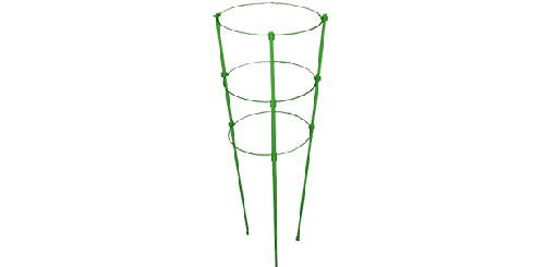 Выращивание огурцов на подоконнике: опора для подвязки огурцов