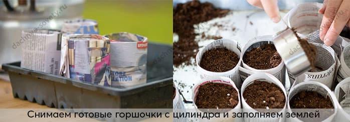 стаканчики для рассады из пленки с дном