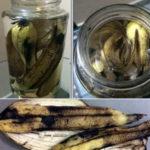 как приготовить удобрение из банановых шкурок