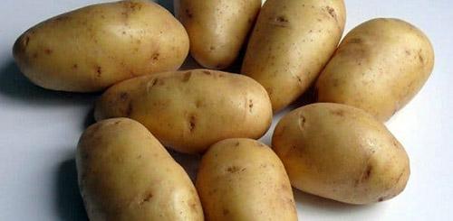Самые вкусные сорта картофеля: Фото 1