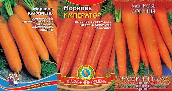 Морковь: сладкие сорта