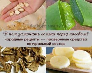 народные рецепты средств, в чем замочить семена