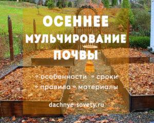 Чем мульчировать почву осенью